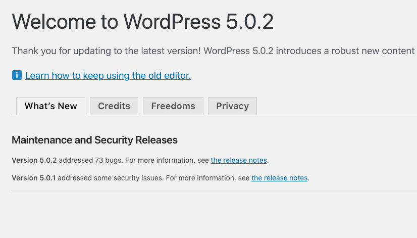 Rasanya Update ke WordPress 5.0.2