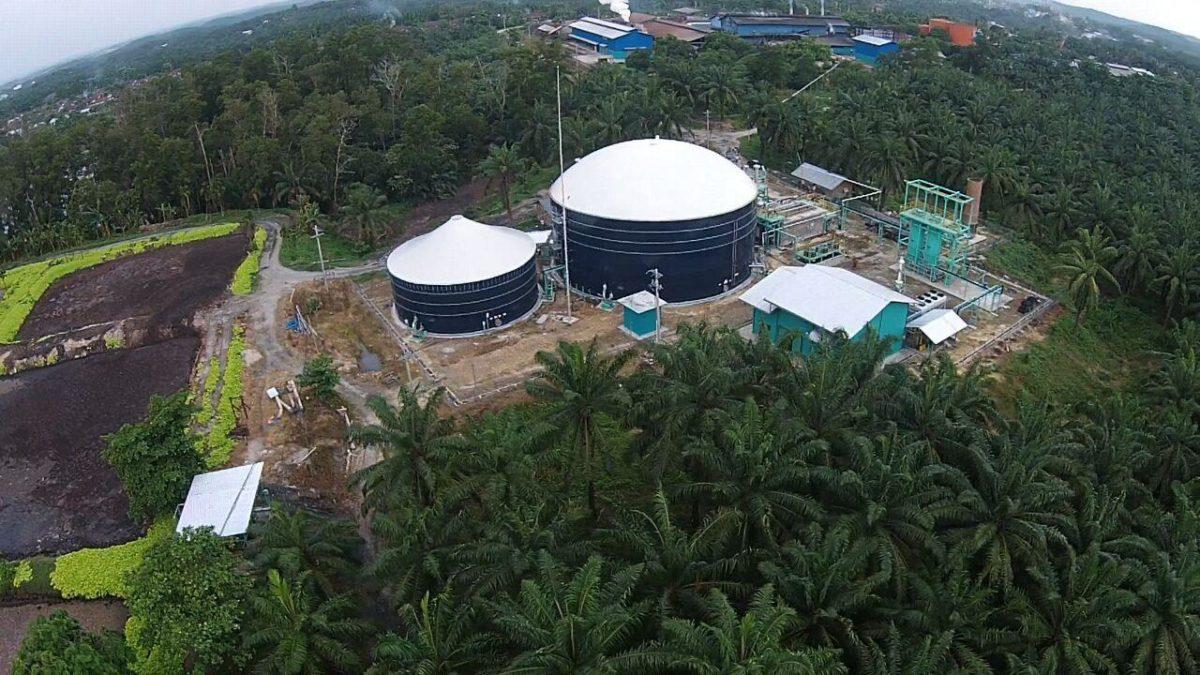 Bantu Pemerataan Listrik di Daerah-Daerah, Perusahaan Sukanto Tanoto Bangun PLTBg